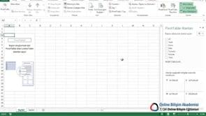 Excel'de zaman çizelgelerini kullanmak