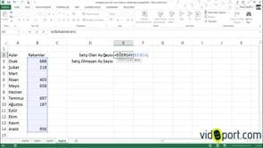 Excel'de Eğersay işlevi ile boş hücre ve dolu hücreleri saymak