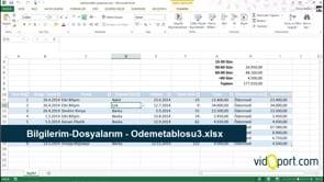 Ödeme vadelerini takip etmek için Excel Raporlama dosyası nasıl oluşturulur?