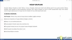 Hesap Grupları- Bilanço Hesapları