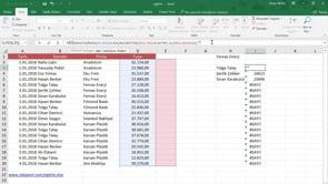Seçilen Firmaya yapılan satışları sıralı şekilde filtreleme