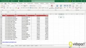 Halka grafikler oluşturmak ve Yüzdelik değerleri grafik üzerinde göstermek